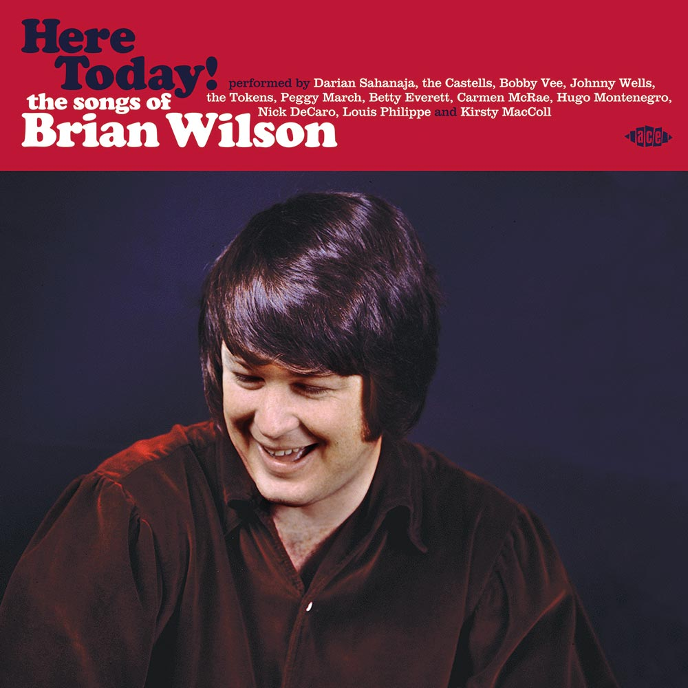 HERE TODAY THE SONGS OF BRIAN WILSON VINYL EDITION